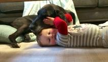Jasper hugs Greg.