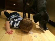 "Jasper and Greg sharing ""treats"""