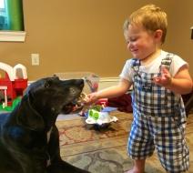 "Jasper ""offering a treat"